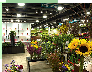 about-field-flowers-shop.jpg